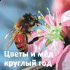 14-я выставка-ярмарка Цветы и мд круглый год
