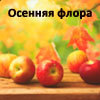 19-я выставка-ярмарка Осенняя флора