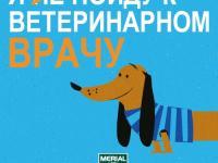 «Праздник паразитов»: новый образовательный проект о здоровье домашних животных