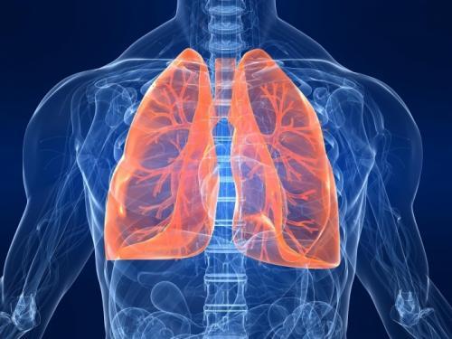 Исследование показало превосходство препарата Алеценза над кризотинибом в лечении определенного типа рака легкого