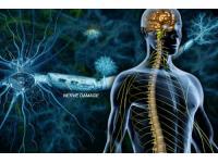 11 июня 2017 - Общероссийский день рассеянного склероза