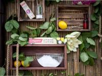 Colgate раскрыли Древние Секреты красоты и здоровья на особой арома-дегустации и йога-классе в парке Сокольники