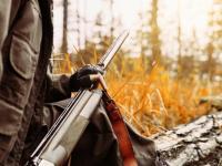 В России запустили специализированный портал по продаже туров и разрешений для самостоятельной охоты в охотничьих угодьях