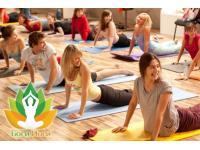 Новый йога-клуб Боги Йоги в Краснодаре объединяет любителей йоги