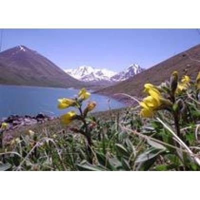 В Кыргызстане намерены создать Фонд поддержки развития туризма