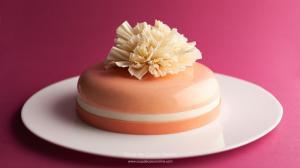 7 недель удовольствия для сладкоежки или как научится делать муссовые торты