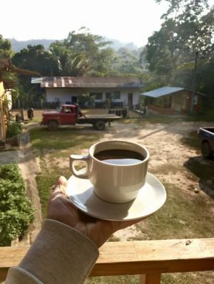 Paulig раскрывает кофейные секреты
