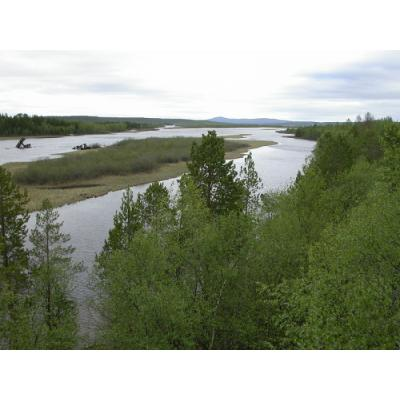 В заповеднике «Пасвик» подписано соглашение о сотрудничестве WWF России и Норвегии