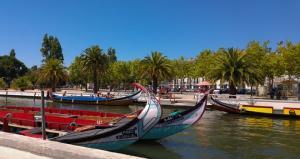 Туроператор «Лузитана Сол»: Новый тур «Северные красоты Португалии»