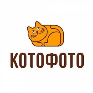 Онлайн-шоппинг от КотоФото в праздники