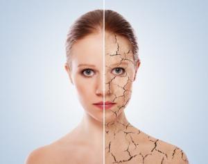 Генетические факторы регенерации кожи