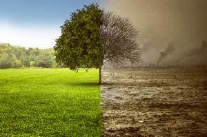 Остановить глобальное изменение климата в мире при помощи новых источников энергии и политической поддержке