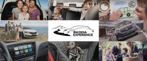 Как выбрать семейный автомобиль: тест-драйв всего модельного ряда ŠKODA в Мега Дыбенко
