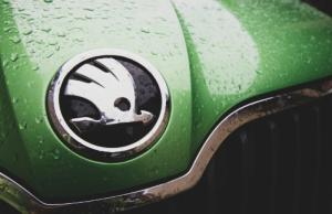 Рейтинг дополнительных опций при покупке автомобиля у жителей Петербурга