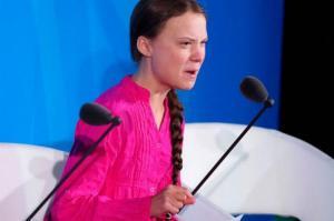 Исследователи из Крымского центра Эмоционального интеллекта, проанализировали выступление Греты Тунберг на саммите ООН