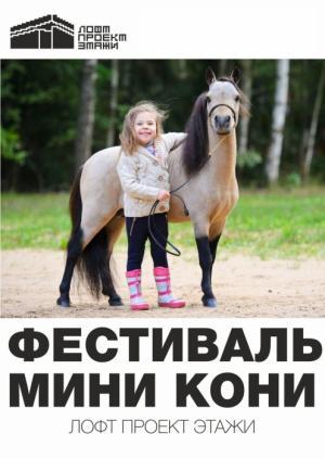Мини-кони в Санкт-Петербурге: необычный фестиваль пройдет в Лофт Проекте ЭТАЖИ