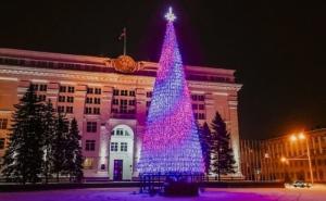 Стоимость кемеровской городской ёлки удивила россиян