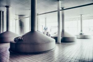 Выявить нелегальных производителей алкоголя поможет совместная работа бизнеса и власти