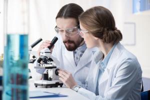 Исследование ГородРабот.ру: Сколько зарабатывают научные сотрудники в России