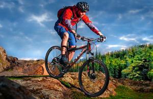 Большой выбор детских, горных и других велосипедов от компании Velozona