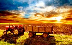 Помощь малому и среднему бизнесу в сельском хозяйстве.
