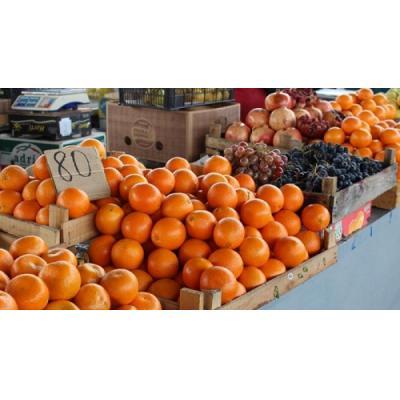Эксперты рассказали, почему в Крыму такие дорогие продукты