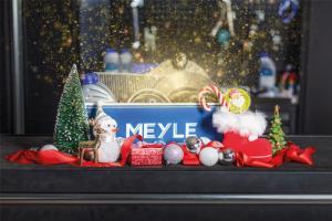 Рождественские праздники с MEYLE. Эластичные муфты MEYLE HD: акцент на «внутренние» ценности