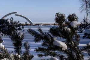 Новый коттеджный поселок появится в Ленобласти на берегу Ладожского озера