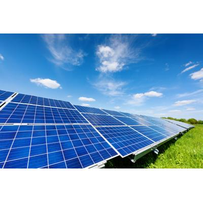 Завод «Такеда Россия» в Ярославле открыл первую в регионе солнечную электростанцию