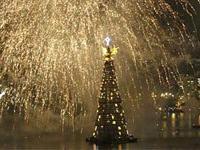 В эту субботу прошло торжественное зажжение огней на самом большом Рождественском дереве