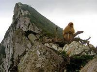Гибралтар: скала с достопримечательностями