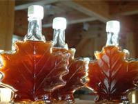 Канадская провинция Онтарио готовится принять гостей и участников фестиваля кленового сиропа