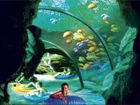 Теперь туристы Орландо смогут посещать парк SeaWorld ночью