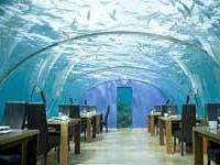 На дне Индийского океана открылся отель для новобрачных