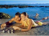 Горячая линия для туристов будет открыта на Гоа