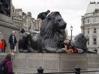 Бронзовые львы в Лондоне будут охраняться