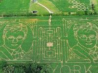 Фермер создал лабиринт на своем поле в виде портрета Гарри Поттера