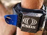 Компания «Z to A Innovations» разработала новую систему защиты от акул