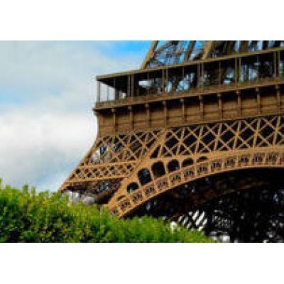 Эйфелеву башню хотят озеленить