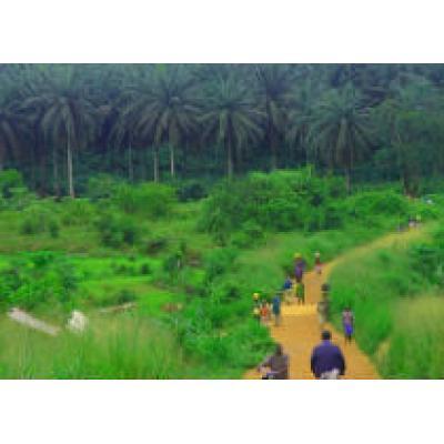 Сьерра-Леоне приглашает иностранцев посетить новый национальный парк