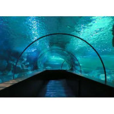 Гигантский аквариум откроется в Анталье