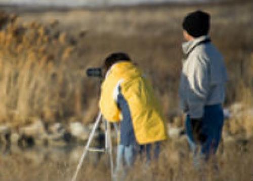 Аргентина приглашает туристов на фестиваль птиц