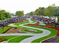 В Дубае для туристов открылся великолепный сад