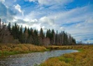 Идею выделения земли под коммерческую недвижимость через аукционы поддерживает Российский земельный союз