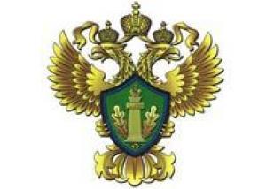 Росприроднадзор обнаружил нефтяные пятна в Москве-реке рядом с Москва- Сити