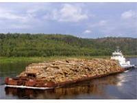 Андрей Дементьев: Изменение объемов и структуры импорта, замена его отечественной продукцией - потенциал для роста российского лесопромышленного комплекса