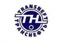 «Транснефть» начала строительство БТС-2