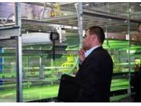 Международные выставки «Мясная промышленность. Куриный Король / VIV Russia 2009» и «Индустрия Холода / Refrigeration Industry» подвели итоги