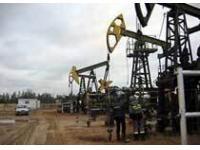 «ЛукБелОйл» открыл новое нефтяное месторождение в Саратовской обл.