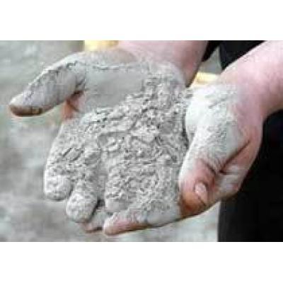Федеральные власти выделили 95 млн рублей на поиск месторождений вольфрама в Приморье